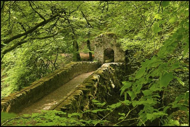Kőhidak – A Braan folyó hídja Skóciában.